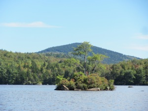 May Pond